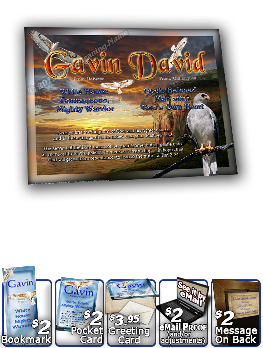 8x10-AN52, personalized 10x12 name meaning print, framed with  name meaning & Bible verse,   white hawk Gavin bird