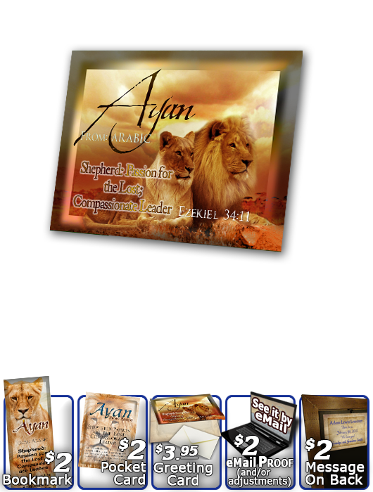 PL-AN05, Name Meaning Print,  Framed, Bible Verse Ayan Lion Lioness, pride african