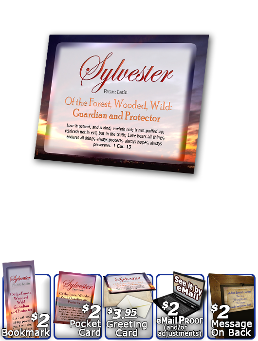 PL-SS03, Name Meaning Print,  Framed, Bible Verse, personalized, sunset, sylvester, simple