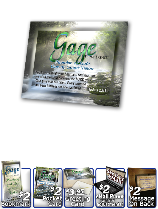 PL-WA11, Name Meaning Print,  Framed, Bible Verse, personalized,gage forest stream river light