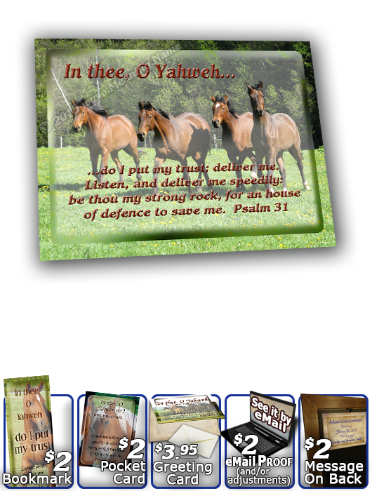 SG-8x10-AN31, Large 10x12 Plaque with Custom Bible Verse  horses, Psalm 31, freedom
